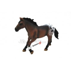 Figura Semental Appaloosa